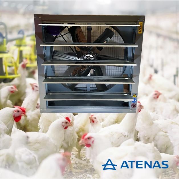Extractores Industriales Avícolas - AtenasExtractores Industriales Avícolas - Atenas